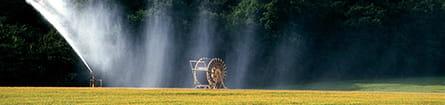 Vanding - Landbrug og gartnerier. Foto: Colourbox