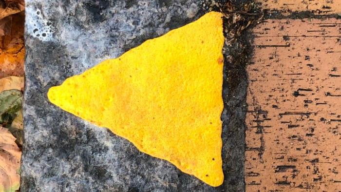 Billedet viser gul trekant, der markerer 10 meter-regel