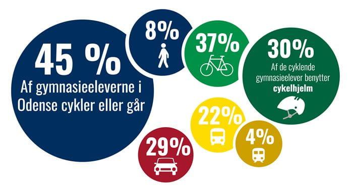Infographic med nøgletal på de odenseanske gymnasieelevers transportvaner