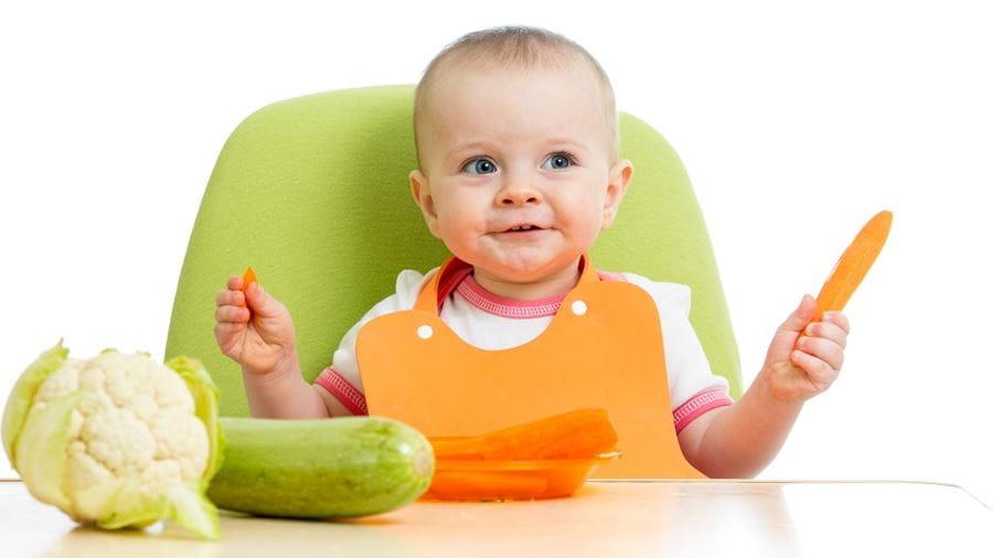 Sundhedsplejens tilbud til familier til nyfødte og op til skolealderen