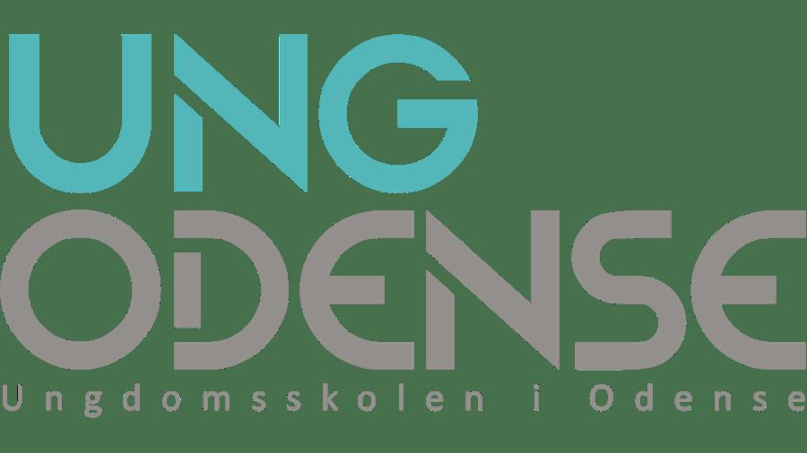 Ungdomsskolen i Odense